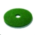 Rental store for 17   GREEN BUFFING PAD in Toledo OH